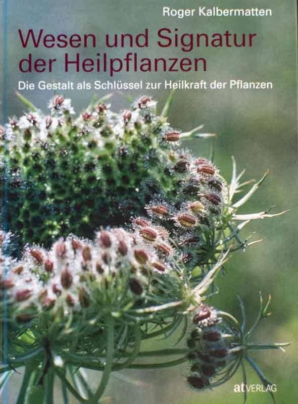 wesen-und-signatur-der-heilpflanzen